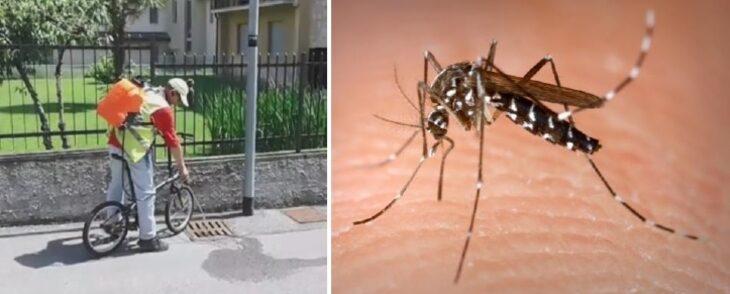 Lotta alle zanzare, al via dal 25 maggio la distribuzione dei prodotti larvicidi ai cittadini per le aree private