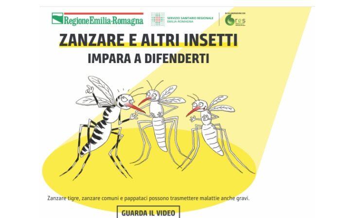 Lotta alle zanzare, Gaiani (Ausl Imola) tra consigli e fake news su prevenzione e trattamenti