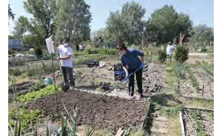 Coronavirus, di nuovo accessibili gli orti comunali: la situazione a Imola e a Castel San Pietro