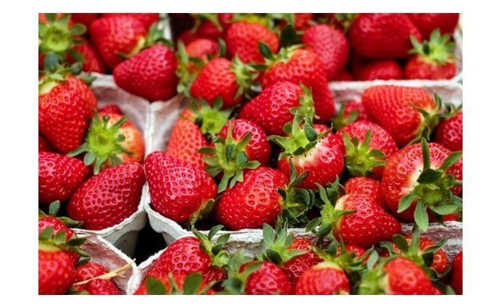 Torna il mercato del sabato pomeriggio in Pedagna per la sola vendita di generi alimentari