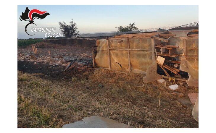 Voliera in legno prende fuoco a Sasso Morelli, uccisi oltre cento colombi