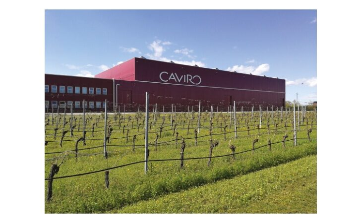 Forum Mondiale delle Cooperative Vinicole organizzato dal Gruppo Caviro