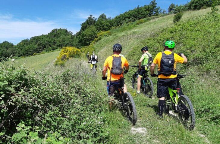 Il turismo estivo 2020 è low cost, in mountain bike e con degustazioni a km 0