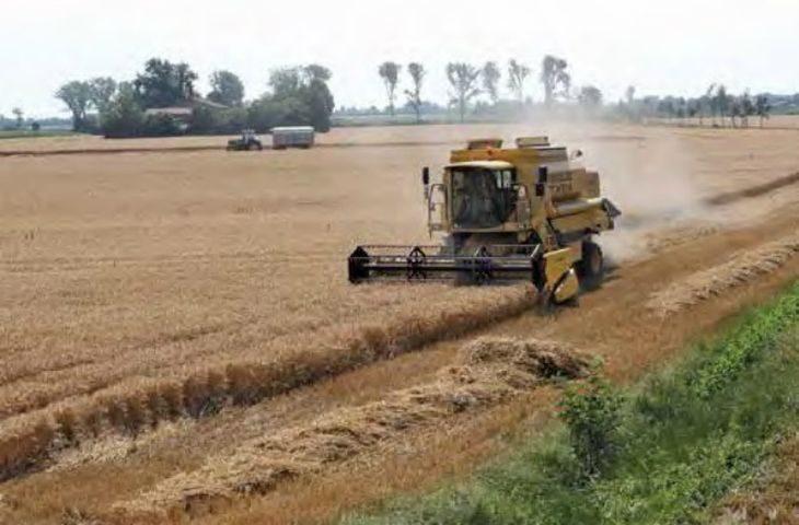 Coldiretti Emilia-Romagna approva le misure per l'agricoltura nel Decreto Rilancio