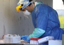 """Coronavirus, altri 4 positivi oggi a Imola, 2 al rientro dall'estero. 61 nuovi casi in Emilia Romagna. Regione: """"Tracciamento funziona, focolai circoscritti'"""