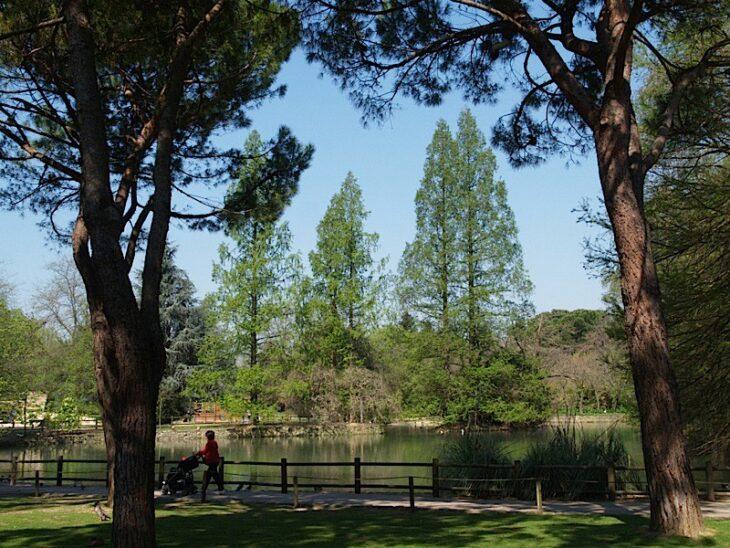 Festa con pic nic al parco Bucci di Faenza