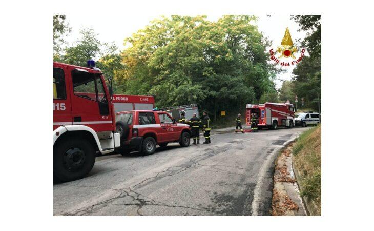 Incendio nel bosco tra Casola Valsenio e Fontanelice, situazione sotto controllo ma l'intervento andrà avanti tutta la notte