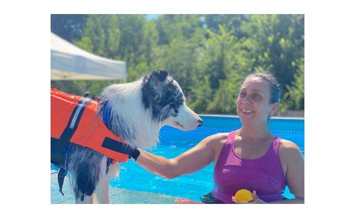 A Ozzano anche i cani imparano a nuotare