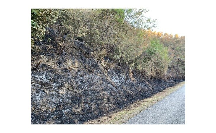 Prorogata la fase di attenzione per gli incendi boschivi su tutto il territorio regionale