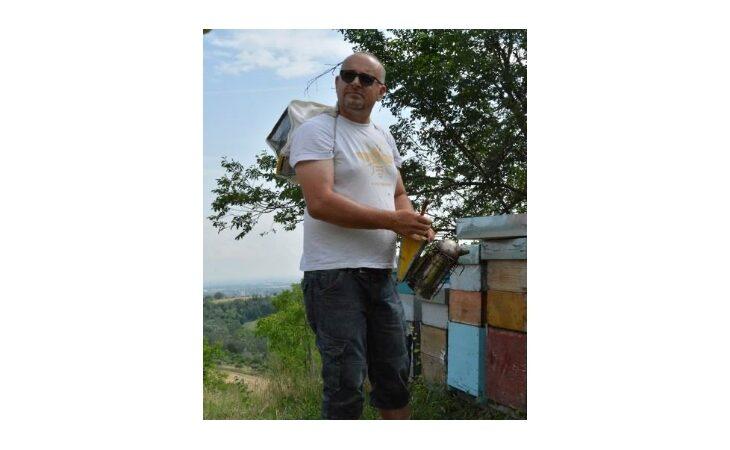 Continua il trend negativo della produzione di miele