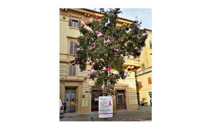 Imola si colora di rosa con l'albero della Lilt in piazza Gramsci