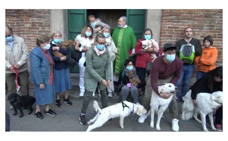 Benedizione degli animali sul sagrato della chiesa di Valverde a Imola