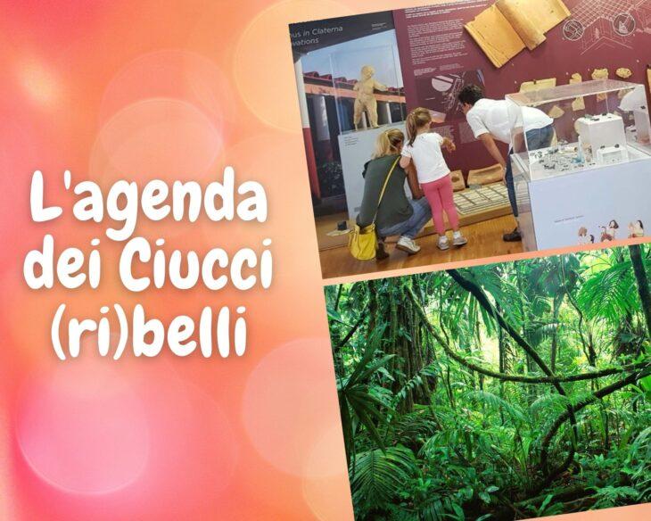 L'agenda dei Ciucci (ri)belli: 19-25 ottobre 2020