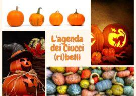 L'agenda dei Ciucci (ri)belli: 26 ottobre-1 novembre 2020