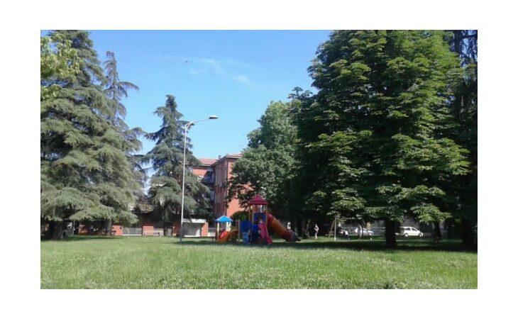 Da domani al via gli abbattimenti degli alberi previsti in piazzale Dante a Castel San Pietro