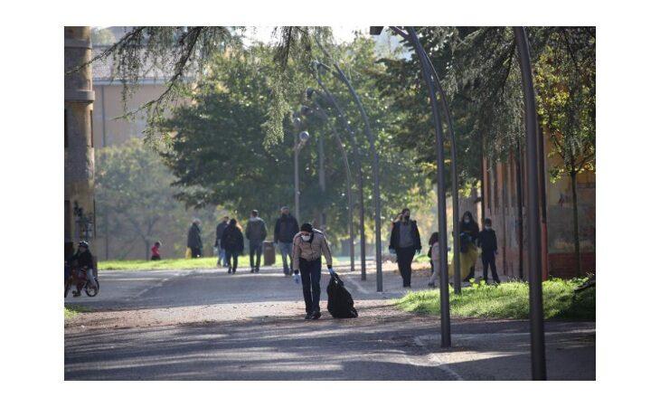 «Per un pugno di mozziconi», il Comune di Imola sospende la pulizia di parchi e giardini