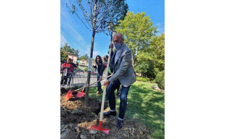 «Mettiamo radici per il futuro», a Imola e Ozzano alberi nelle scuole e nelle aree verdi (e per i cittadini)