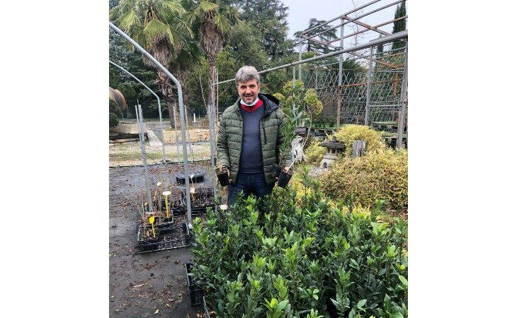 «Mettiamo radici per il futuro», a Imola e Castello distribuite 19 mila tra piante e siepi