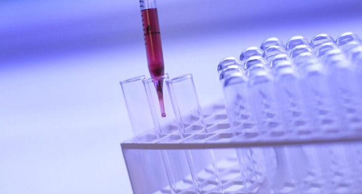 Coronavirus, 92 nuovi positivi e 3 vittime nel circondario di Imola. In Emilia Romagna meno contagi e meno ricoveri oggi
