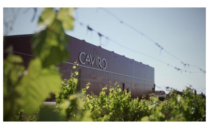 Il Gruppo Caviro chiude l'anno in crescita con un fatturato di 362 milioni di euro
