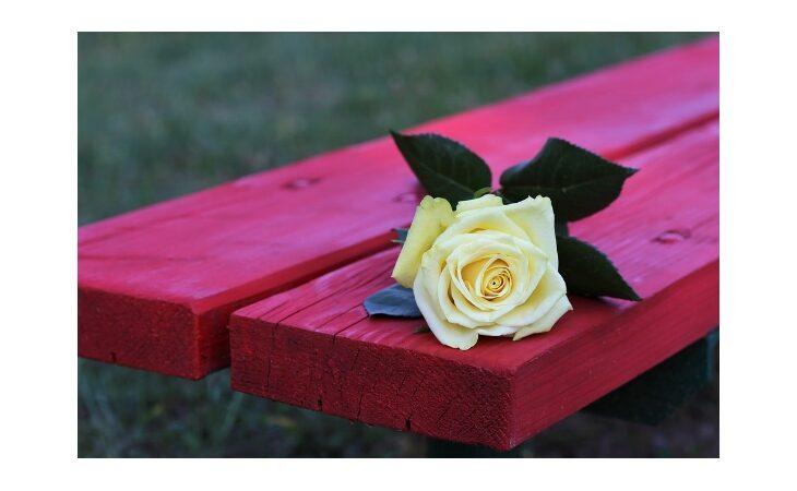 A Imola una panchina rossa per dire «No alla violenza sulle donne»