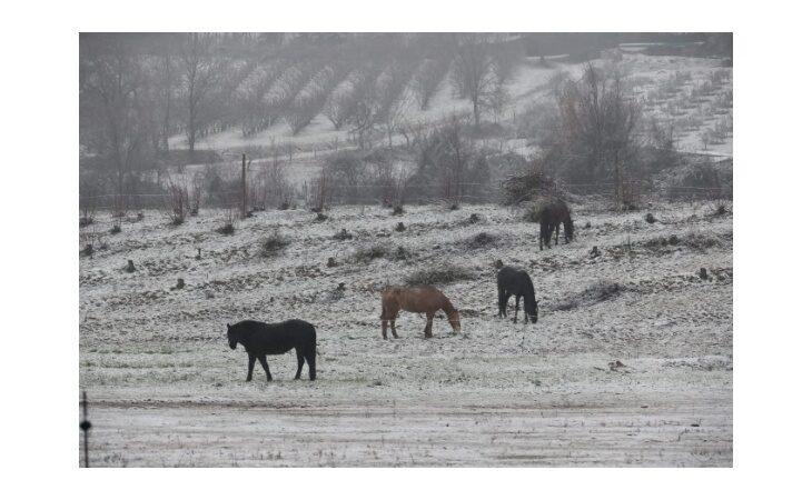 Neve in collina e fiocchi in pianura su tutto il Circondario, le immagini più belle
