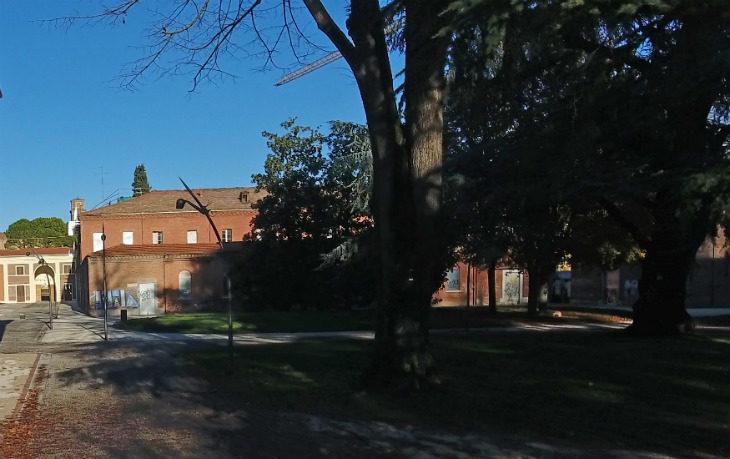 Alberi in condizioni critiche, al Parco dell'Osservanza previsto l'abbattimento di tre tigli ed un cipresso