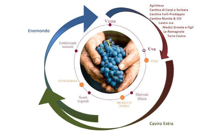 L'Enoteca regionale coordina maxi-progetto di filiera «green» per il comparto vitivinicolo dell'Emilia Romagna
