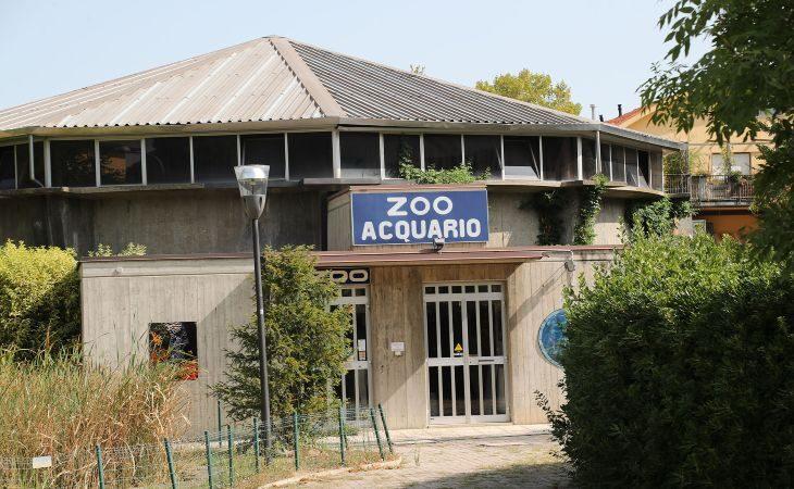 Lo Zoo Acquario chiude i battenti, entro giugno «trasloco» per pesci, rettili e anfibi