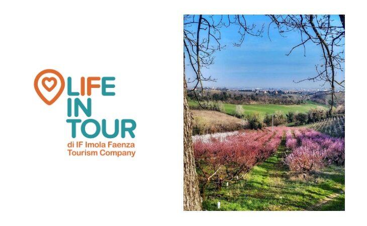 E' nata «Life in Tour», l'agenzia viaggi di If Imola Faenza Tourism Company