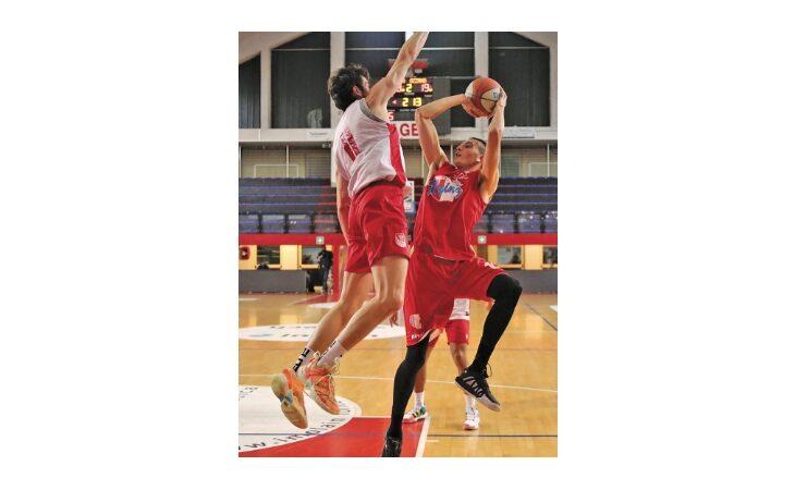 Basket serie B, disfatta dell'Andrea Costa nel derby! Sorriso a trentuno… denti per la  la Sinermatic Ozzano