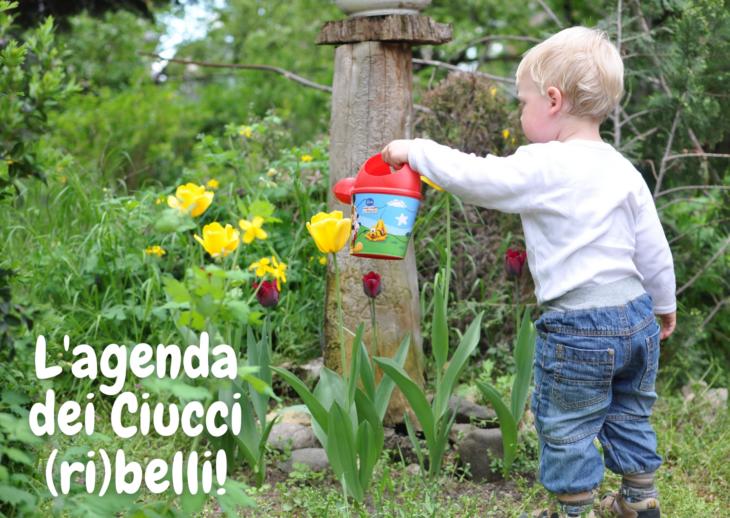 L'agenda dei Ciucci (ri)belli: 5-11 aprile 2021