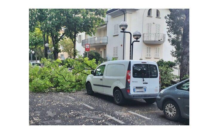 Vento forte ed alberi caduti, danni a Imola e Toscanella