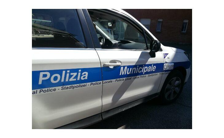 Automobilista investe capriolo sulla via Emilia a Imola