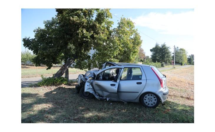 Perde il controllo dell'auto e si schianta contro un albero, 20enne trasportata al Maggiore