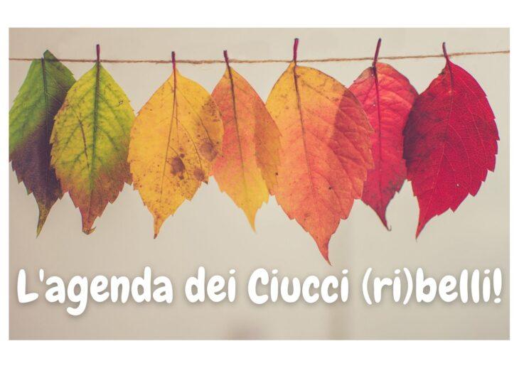 L'agenda dei Ciucci (ri)belli: 27 settembre – 3 ottobre 2021