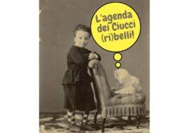 L'agenda dei Ciucci (ri)belli: 11-17 ottobre 2021